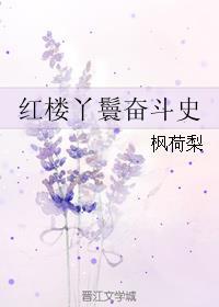 红楼丫鬟奋斗史